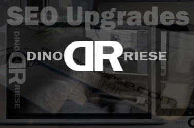 SEO Upgeading Service Image | NYC, Long Island, Queens, Brooklyn, New York, Valley Stream | 516.286.3583, DinoRiese.com