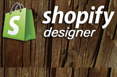 Shopify, E-Commerce Services Image, NYC, Long Island, Queens, Brooklyn, New York, Valley Stream | 516.286.3583, DinoRiese.com