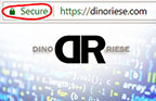 Secured Sockets Layer (SSL Account image) | DinoRiese.com | 516.286.3583 | DinoRiese@gmail.com