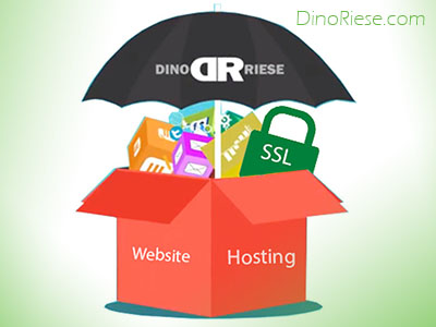 Dino Riese | Web Hosting | SEO Specialist | Long Island, New York City, Broklyn, Queens | Phone: 516.286.3583 | DinoRiese@gmail.com